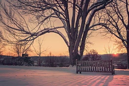 snow-dawn-sunset-winter